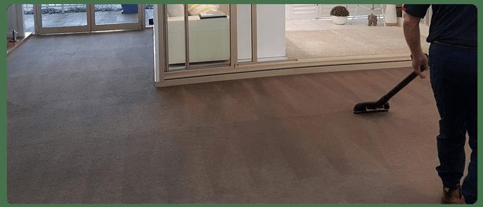 Qualified Carpet Cleaner